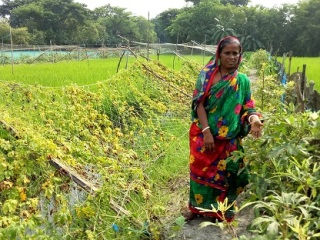 PH 1Woman with her integrated farm in Khatail village, a member of women managed households group