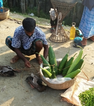 babul-selling-his-produced-vegetables-in-the-local-market.jpg